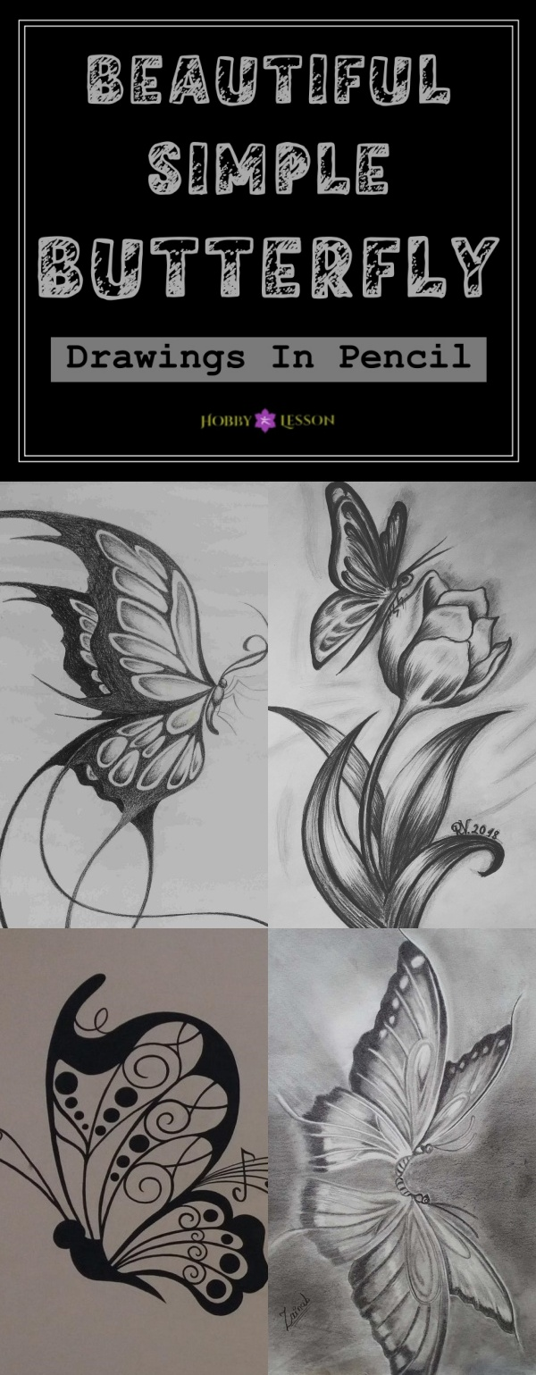 40 Beautiful Simple Butterfly Drawings In Pencil