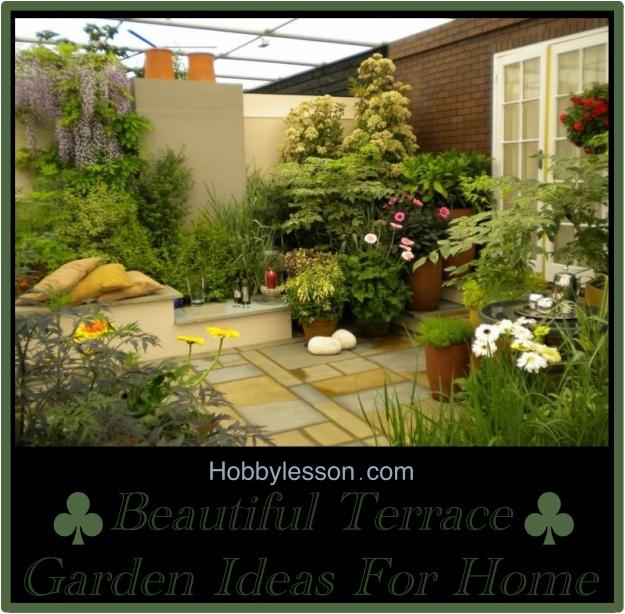 Beautiful Terrace Garden Ideas For Home